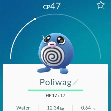 Poliwag - Pokémon Go
