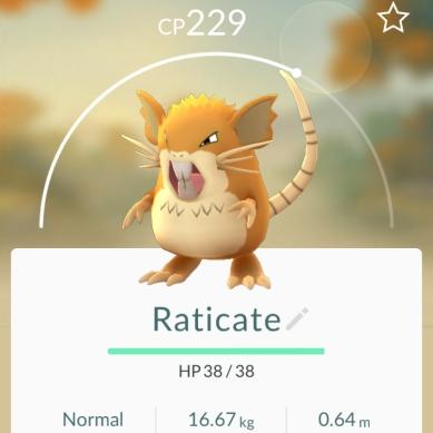 Raticate - Pokémon Go